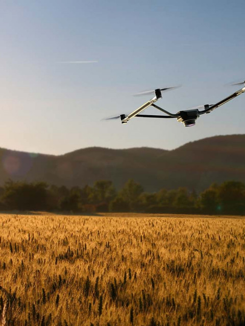 KLEA - a drone for farmers