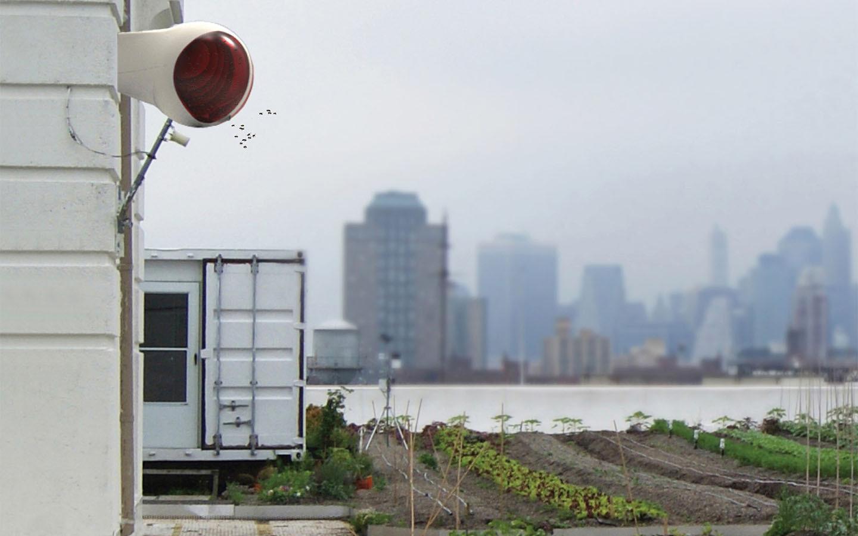 MAJA // urban bee-hive
