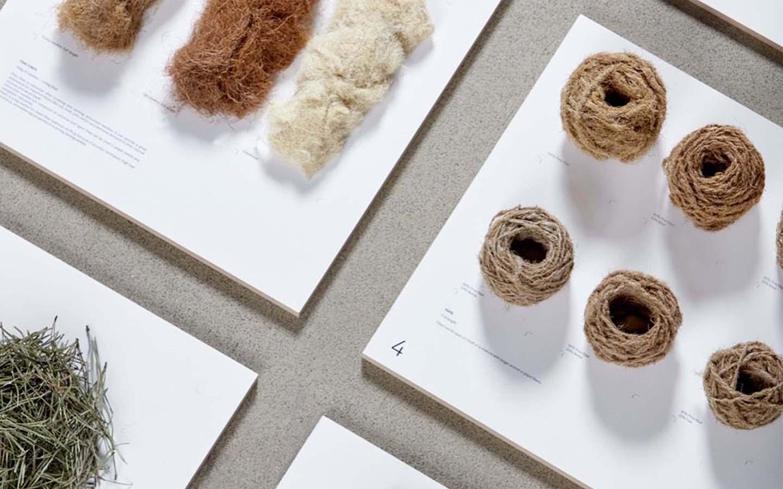 Forest Wool/Pine needle fiber