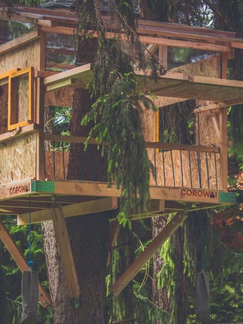 DIY树屋