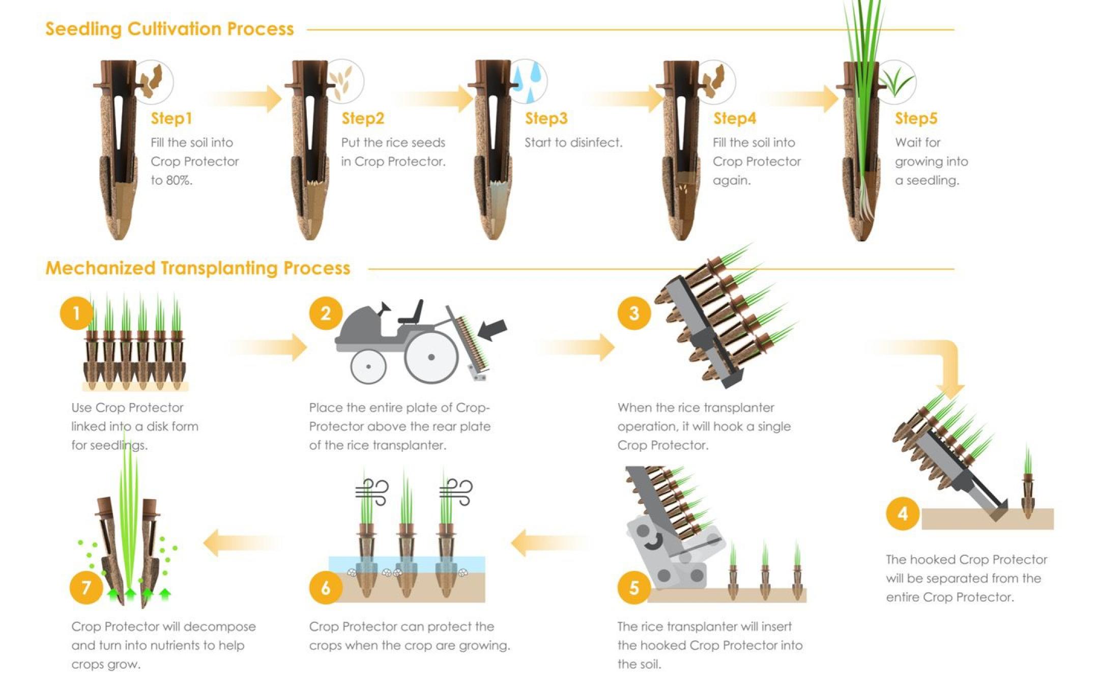 秧苗固樁釘