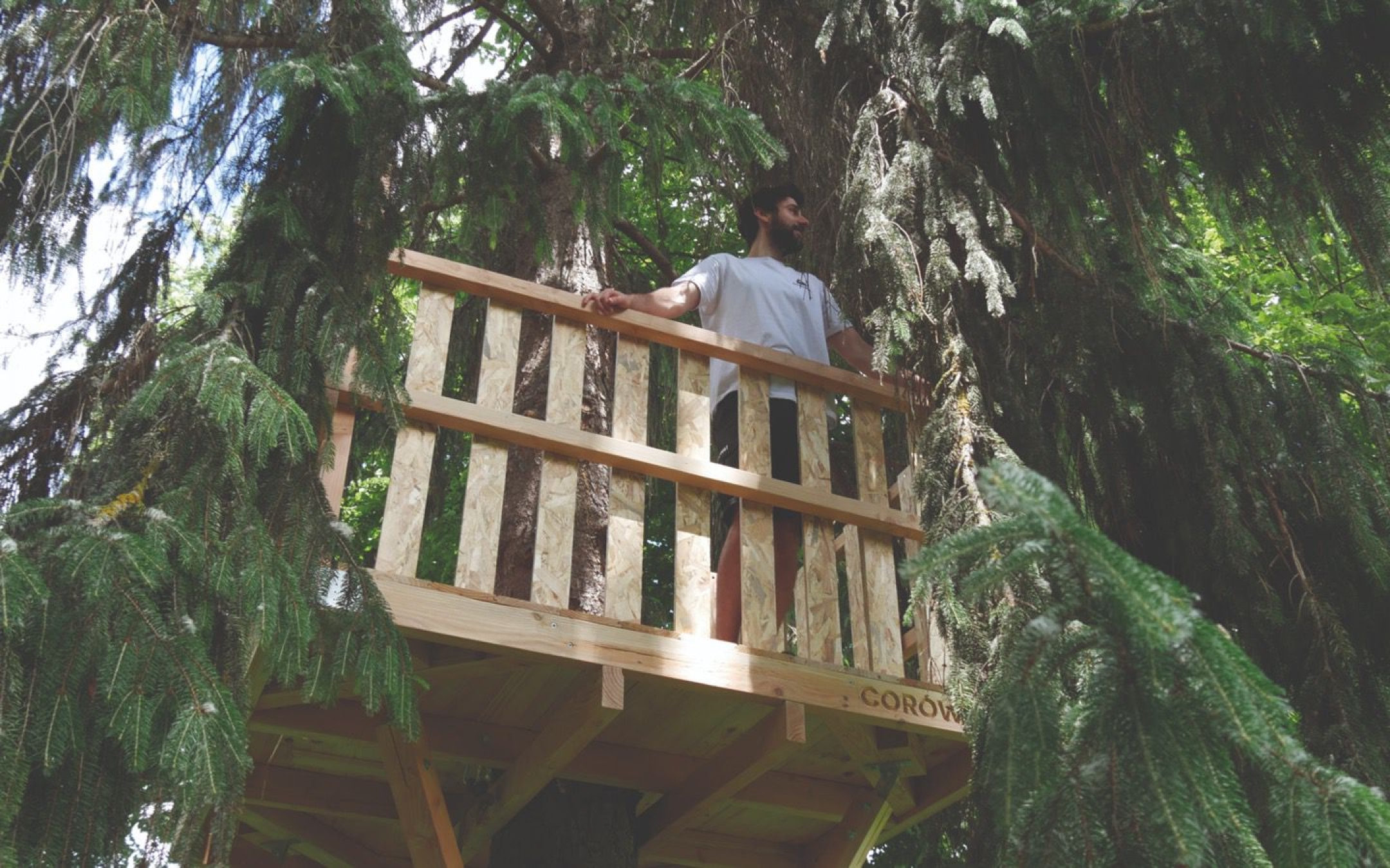 DIY Tree House