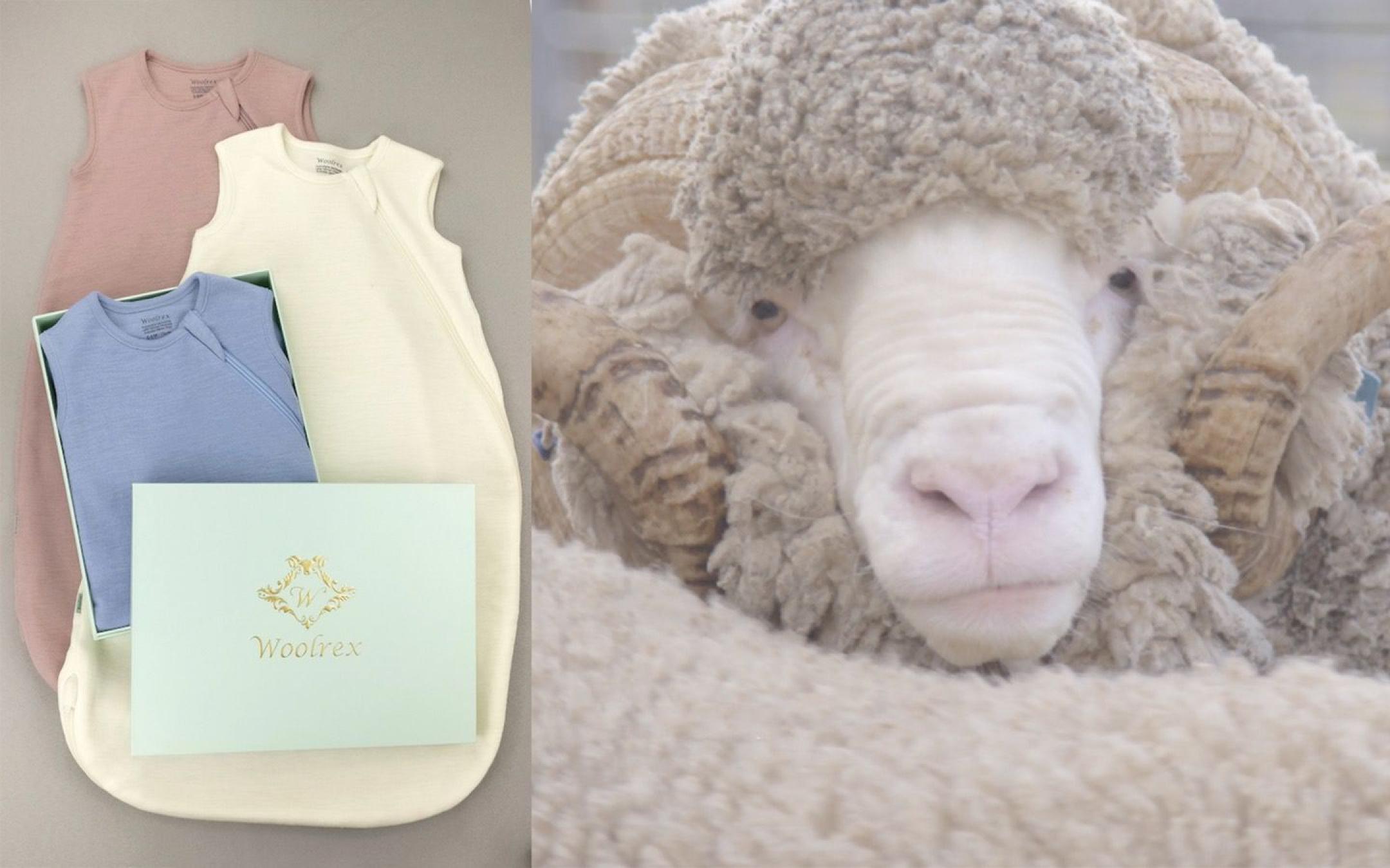 Pure Merino Baby Sleeping Bag