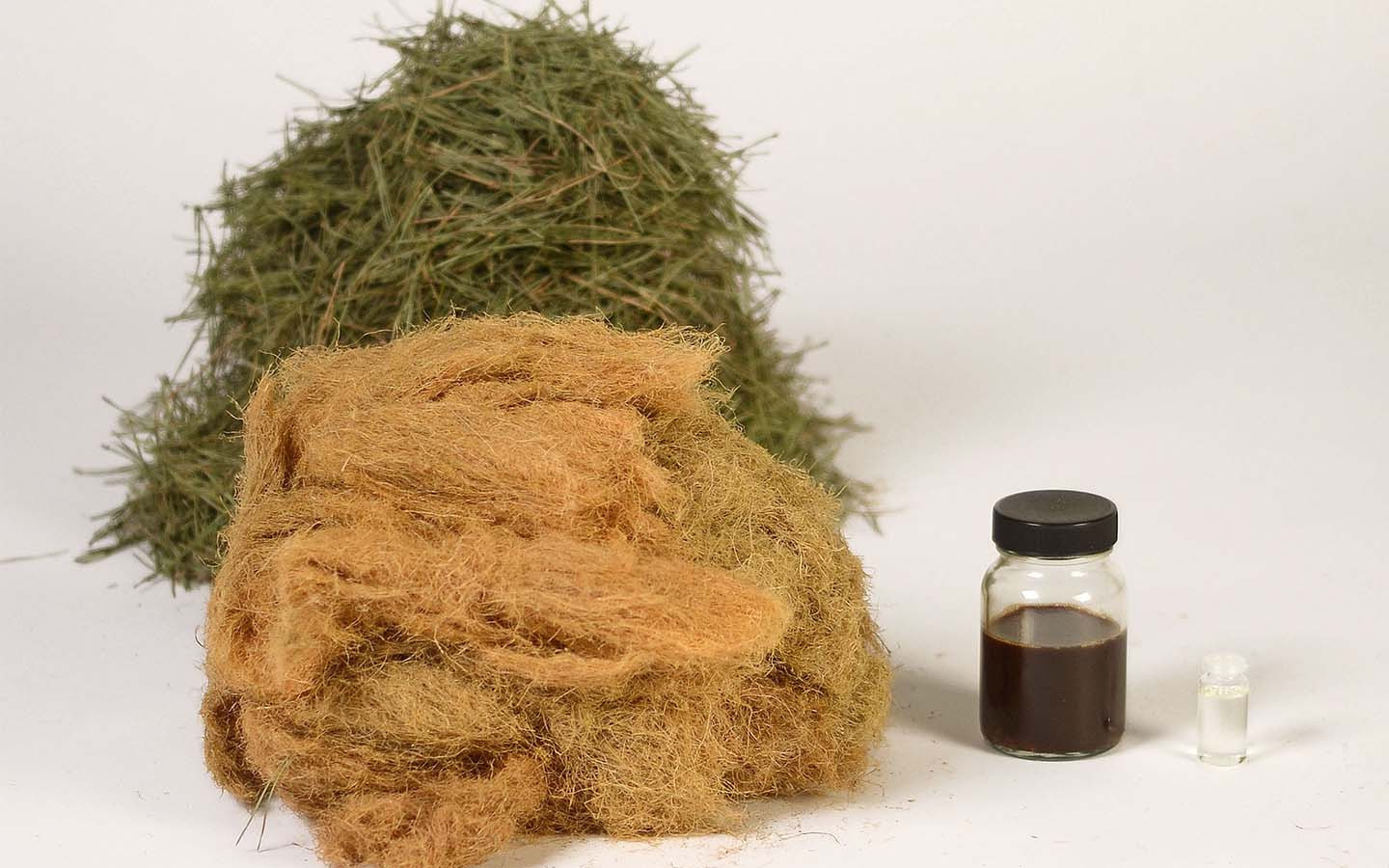 Forest Wool/Pine needle fiber