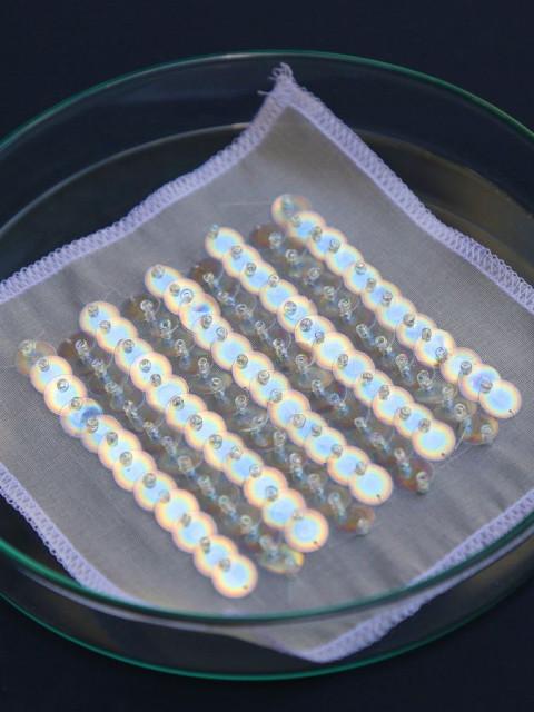 Bio Iridescent Sequin