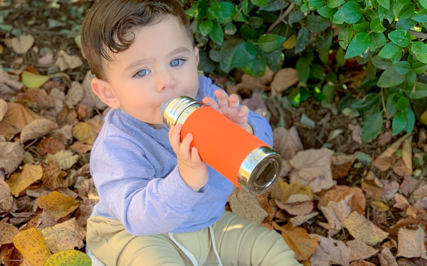 Pura insulated straw bottle