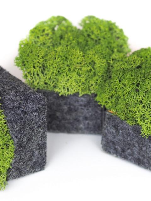 Nordgröna Pixel