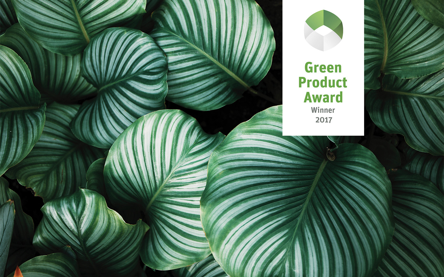 Winners Green Product Award 2017