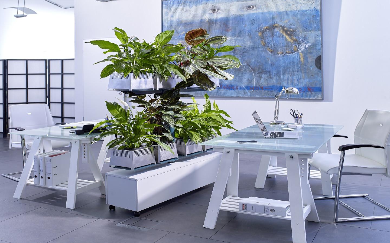 Active Plant Pot System / UVC